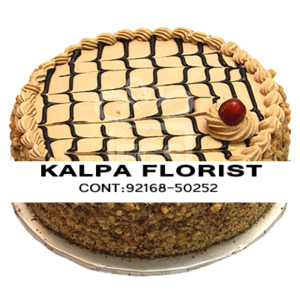 Send Tush Coffee Cake to Jalandhar Punjab India, Send Tush Coffee Cake to Jalandhar, Send Tush Coffee Cakes to Punjab, Send Tush Coffee Cakes to India, Send Cakes to Jalandhar Punjab India, Jalandhar, Punjab India, Send Tush Coffee Cakes