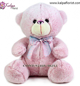 Buy Soft Toys Online Punjab India, Teddy Bear delivery in Jalandhar, Teddy bear Delivery in Jalandhar City, Buy Teddy Bear Online, Teddy bear Delivery to Jalandhar, Teddy Bear to Jalandhar,  Charming teddy bear to Jalandhar, Teddy bear Delivery in Jalandhar Same Day, Send Teddy bear Online with home Delivery, Same Day Online Teddy bear Delivery in Jalandhar, Online Teddy bear delivery in Jalandhar,  Midnight Teddy Bear delivery in Jalandhar,  Online shopping for Teddy Bear to Jalandhar Kalpa Florist