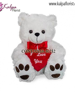 Gift Delivery in Jalandhar City, Teddy Bear delivery in Jalandhar, Teddy bear Delivery in Jalandhar City, Buy Teddy Bear Online, Teddy bear Delivery to Jalandhar, Teddy Bear to Jalandhar,  Charming teddy bear to Jalandhar, Teddy bear Delivery in Jalandhar Same Day, Send Teddy bear Online with home Delivery, Same Day Online Teddy bear Delivery in Jalandhar, Online Teddy bear delivery in Jalandhar,  Midnight Teddy Bear delivery in Jalandhar,  Online shopping for Teddy Bear to Jalandhar Kalpa Florist