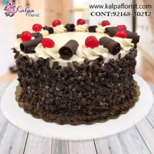 Midnight Cake Delivery in Jalandhar Punjab, Top Rated Cakes in Jalandhar, Online Birthday Cakes Delivery in Jalandhar,  Cakes Delivery to India,  Cakes to India, Cakes to Jalandhar India, Cakes online to India, Cakes Delivery in Jalandhar Same Day,  Send Cakes Online with home Delivery, Same Day Online Cakes Delivery in India,  Best Cakes in India, Online shopping for  Cakes to India in Kalpa Florist