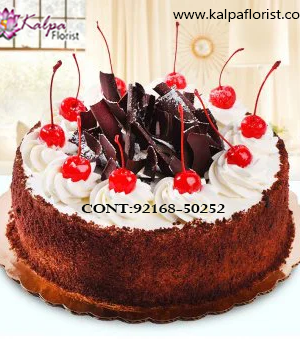 Order Cake Online & Send to India,  Cakes Delivery to India,  Cakes to India, Cakes to Delhi Jalandhar India, Cakes online to India, Cakes Delivery in Jalandhar Same Day,  Send Cakes Online with home Delivery, Same Day Online Cakes Delivery in India,  Cakes wholesales in India, Online shopping for  Cakes to India in Kalpa Florist