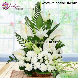 Order & Send Flowers to Jalandhar,  Send flowers to Jalandhar Online, Send flowers to Jalandhar Punjab,  Flowers Delivery to Jalandhar, Flowers to Jalandhar, Mix Flowers to Jalandhar, Flowers Bouquet to Jalandhar, Flowers Delivery in Jalandhar Same Day, Send Flowers Online with home Delivery, Same Day Online Flowers Delivery in Jalandhar, Online Flowers delivery in Jalandhar,  Midnight Flowers delivery in Jalandhar,  Send flowers online Jalandhar  Online shopping for Flowers to Jalandhar Kalpa Florist