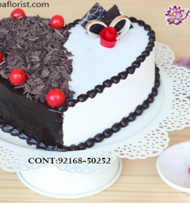 Send Delicious Cake Online in Jalandhar, Online Cake Delivery at Midnight Delhi, Cakes Delivery in Jalandhar,  Cakes Delivery to Jalandhar,  Cakes to Jalandhar, Cakes to Jalandhar Online, Cakes online to Jalandhar, Cakes Delivery in Jalandhar Same Day,  Send Cakes Online with home Delivery, Same Day Online Cakes Delivery in Jalandhar,  Cakes wholesales in Jalandhar, Online shopping for  Cakes to Jalandhar in Kalpa Florist