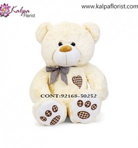 Send Soft Toys to Jalandhar Cantt, Teddy Bear delivery in Jalandhar, Teddy bear Delivery in Jalandhar City, Buy Teddy Bear Online, Teddy bear Delivery to Jalandhar, Teddy Bear to Jalandhar,  Charming teddy bear to Jalandhar, Teddy bear Delivery in Jalandhar Same Day, Send Teddy bear Online with home Delivery, Same Day Online Teddy bear Delivery in Jalandhar, Online Teddy bear delivery in Jalandhar,  Midnight Teddy Bear delivery in Jalandhar,  Online shopping for Teddy Bear to Jalandhar Kalpa Florist