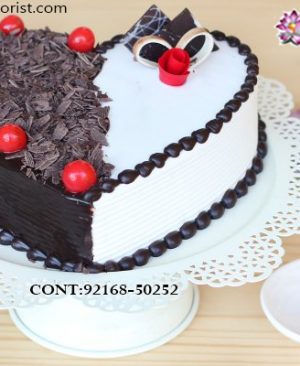 Order Midnight Cake Delivery,  Send Delicious Cake Online in Jalandhar, Online Cake Delivery at Midnight Delhi, Cakes Delivery in Jalandhar,  Cakes Delivery to Jalandhar,  Cakes to Jalandhar, Cakes to Jalandhar Online, Cakes online to Jalandhar, Cakes Delivery in Jalandhar Same Day,  Send Cakes Online with home Delivery, Same Day Online Cakes Delivery in Jalandhar,  Cakes wholesales in Jalandhar, Online shopping for  Cakes to Jalandhar in Kalpa Florist