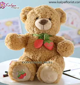 Teddy Bear Delivery to Jalandhar, Teddy Bear delivery in Jalandhar, Teddy bear Delivery in Jalandhar City, Buy Teddy Bear Online, Teddy bear Delivery to Jalandhar, Teddy Bear to Jalandhar,  Charming teddy bear to Jalandhar, Teddy bear Delivery in Jalandhar Same Day, Send Teddy bear Online with home Delivery, Same Day Online Teddy bear Delivery in Jalandhar, Online Teddy bear delivery in Jalandhar,  Midnight Teddy Bear delivery in Jalandhar,  Online shopping for Teddy Bear to Jalandhar Kalpa Florist