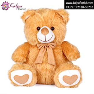 Best Teddy Bear Shop in Jalandhar, Teddy Bear delivery in Jalandhar, Teddy bear Delivery in Jalandhar City, Buy Teddy Bear Online, Teddy bear Delivery to Jalandhar, Teddy Bear to Jalandhar,  Charming teddy bear to Jalandhar, Teddy bear Delivery in Jalandhar Same Day, Send Teddy bear Online with home Delivery, Same Day Online Teddy bear Delivery in Jalandhar, Online Teddy bear delivery in Jalandhar,  Midnight Teddy Bear delivery in Jalandhar,  Online shopping for Teddy Bear to Jalandhar Kalpa Florist