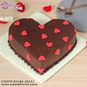 Birthday Cake Special, Online Cake Delivery, Order Cake Online, Send Cakes to Punjab, Online Cake Delivery in Punjab,  Online Cake Order,  Cake Online, Online Cake Delivery in India, Online Cake Delivery Near Me, Online Birthday Cake Delivery in Bangalore,  Send Cakes Online with home Delivery, Online Cake Delivery India,  Online shopping for  Cakes to Jalandhar, Order Birthday Cakes, Order Delicious Cakes Home Delivery Online, Buy and Send Cakes to India, Kalpa Florist.