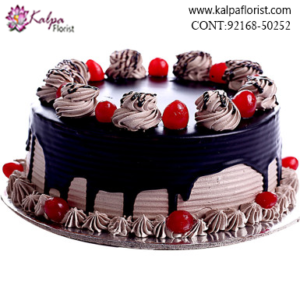 Buy Cakes Online in Near Me, Send Cakes to Jalandhar, Send Delicious Cake Online in Jalandhar, Online Cake Delivery at Midnight Delhi, Cakes Delivery in Jalandhar, Cakes Delivery to Jalandhar, Cakes to Jalandhar, Cakes to Jalandhar Online, Cakes online to Jalandhar, Cakes Delivery in Jalandhar Same Day, Send Cakes Online with home Delivery, Same Day Online Cakes Delivery in Jalandhar, Online shopping for Cakes to Jalandhar in Kalpa Florist