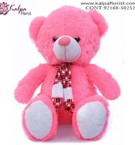 Buy Teddy, Teddy Bear Online, Send Gifts to Mumbai Online , Teddy Bear Online Purchase, Teddy Bear Online Booking, Buy Teddy Bear Online, Teddy Bear Online in India, Teddy Bear Online Australia, Teddy Bear Online South Africa, Buy a Teddy Bear Online, Send Teddy bear Online with home Delivery, Same Day Online Teddy bear Delivery in Jalandhar, Online Teddy bear delivery in Jalandhar,  Midnight Teddy Bear delivery in Jalandhar,  Online shopping for Teddy Bear to Jalandhar, Kalpa Florist