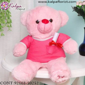 Buy Teddy Bear Online India , Teddy Bear delivery in Jalandhar, Teddy bear Delivery in Jalandhar City, Buy Teddy Bear Online, Teddy bear Delivery to Jalandhar, Teddy Bear to Jalandhar,  Charming teddy bear to Jalandhar, Teddy bear Delivery in Jalandhar Same Day, Send Teddy bear Online with home Delivery, Same Day Online Teddy bear Delivery in Jalandhar, Online Teddy bear delivery in Jalandhar,  Midnight Teddy Bear delivery in Jalandhar,  Online shopping for Teddy Bear to Jalandhar Kalpa Florist