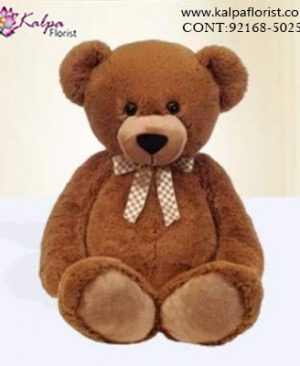 Buy Teddy Bear Online India, Teddy Bear delivery in Jalandhar, Teddy bear Delivery in Jalandhar City, Buy Teddy Bear Online, Teddy bear Delivery to Jalandhar, Teddy Bear to Jalandhar,  Charming teddy bear to Jalandhar, Teddy bear Delivery in Jalandhar Same Day, Send Teddy bear Online with home Delivery, Same Day Online Teddy bear Delivery in Jalandhar, Online Teddy bear delivery in Jalandhar,  Midnight Teddy Bear delivery in Jalandhar,  Online shopping for Teddy Bear to Jalandhar Kalpa Florist