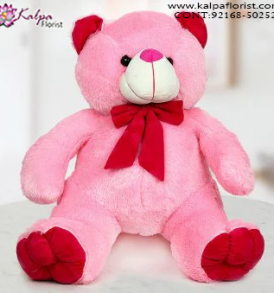 Send Gifts to Kapurthala Online, Teddy Bear Online, Send Gifts to Mumbai Online , Teddy Bear Online Purchase, Teddy Bear Online Booking, Buy Teddy Bear Online, Teddy Bear Online in India, Teddy Bear Online Australia, Teddy Bear Online South Africa, Buy a Teddy Bear Online, Send Teddy bear Online with home Delivery, Same Day Online Teddy bear Delivery in Jalandhar, Online Teddy bear delivery in Jalandhar,  Midnight Teddy Bear delivery in Jalandhar,  Online shopping for Teddy Bear to Jalandhar, Kalpa Florist