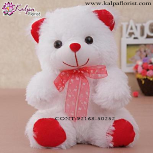 Send Gifts to Mumbai Online , Send Gifts Online Mumbai, Send Online Birthday Gifts to Mumbai, Buy Teddy Bear Online, Send Gifts Online in Mumbai, Teddy Bear to Jalandhar,  Charming teddy bear to Jalandhar, Teddy bear Delivery in Jalandhar Same Day, Send Teddy bear Online with home Delivery, Same Day Online Teddy bear Delivery in Jalandhar, Online Teddy bear delivery in Jalandhar,  Midnight Teddy Bear delivery in Jalandhar,  Online shopping for Teddy Bear to Jalandhar Kalpa Florist