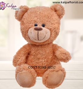 Send Soft Toys to Jalandhar Punjab, Teddy Bear delivery in Jalandhar, Teddy bear Delivery in Jalandhar City, Buy Teddy Bear Online, Teddy bear Delivery to Jalandhar, Teddy Bear to Jalandhar,  Charming teddy bear to Jalandhar, Teddy bear Delivery in Jalandhar Same Day, Send Teddy bear Online with home Delivery, Same Day Online Teddy bear Delivery in Jalandhar, Online Teddy bear delivery in Jalandhar,  Midnight Teddy Bear delivery in Jalandhar,  Online shopping for Teddy Bear to Jalandhar Kalpa Florist