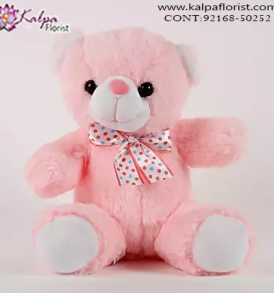 Teddy Bear Online, Send Gifts to Mumbai Online , Teddy Bear Online Purchase, Teddy Bear Online Booking, Buy Teddy Bear Online, Teddy Bear Online in India, Teddy Bear Online Australia, Teddy Bear Online South Africa, Buy a Teddy Bear Online, Send Teddy bear Online with home Delivery, Same Day Online Teddy bear Delivery in Jalandhar, Online Teddy bear delivery in Jalandhar,  Midnight Teddy Bear delivery in Jalandhar,  Online shopping for Teddy Bear to Jalandhar Kalpa Florist