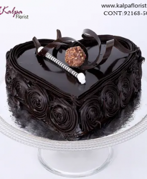 Cake Shop in Model Town Jalandhar, Send Cakes to Jalandhar, Send Delicious Cake Online in Jalandhar, Online Cake Delivery at Midnight Delhi, Cakes Delivery in Jalandhar,  Cakes Delivery to Jalandhar,  Cakes to Jalandhar, Cakes to Jalandhar Online, Cakes online to Jalandhar, Cakes Delivery in Jalandhar Same Day,  Send Cakes Online with home Delivery, Same Day Online Cakes Delivery in Jalandhar,  Online shopping for  Cakes to Jalandhar in Kalpa Florist