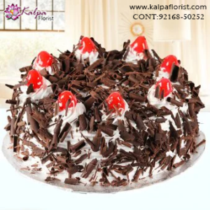Deliver Cake in Jalandhar, Order Cake Home Delivery,  Send Delicious Cake Online in Jalandhar, Online Cake Delivery at Midnight Delhi, Cakes Delivery in Jalandhar,  Cakes Delivery to Jalandhar,  Cakes to Jalandhar, Cakes to Jalandhar Online, Cakes online to Jalandhar, Cakes Delivery in Jalandhar Same Day,  Send Cakes Online with home Delivery, Same Day Online Cakes Delivery in Jalandhar,  Online shopping for  Cakes to Jalandhar in Kalpa Florist
