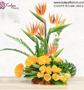 Flowers Delivery Online Ludhiana, Punjab, Online Delivery of Flowers in Jalandhar, Send flowers to Jalandhar Online, Send flowers to Jalandhar Punjab,  Flowers Delivery to Jalandhar, Flowers to Jalandhar, Mix Flowers to Jalandhar, Flowers Bouquet to Jalandhar, Flowers Delivery in Jalandhar Same Day, Send Flowers Online with home Delivery, Same Day Online Flowers Delivery in Jalandhar, Online Flowers delivery in Jalandhar,  Midnight Flowers delivery in Jalandhar,  Send flowers online Jalandhar  Online shopping for Flowers to Jalandhar Kalpa Florist