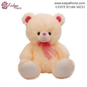 Send Teddy Bears Online From Jalandhar, Teddy Bear delivery in Jalandhar, Teddy bear Delivery in Jalandhar City, Buy Teddy Bear Online, Teddy bear Delivery to Jalandhar, Teddy Bear to Jalandhar,  Charming teddy bear to Jalandhar, Teddy bear Delivery in Jalandhar Same Day, Send Teddy bear Online with home Delivery, Same Day Online Teddy bear Delivery in Jalandhar, Online Teddy bear delivery in Jalandhar,  Midnight Teddy Bear delivery in Jalandhar,  Online shopping for Teddy Bear to Jalandhar Kalpa Florist