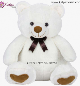 Teddy Bear Online Shopping India, Teddy Bear delivery in Jalandhar, Teddy bear Delivery in Jalandhar City, Buy Teddy Bear Online, Teddy bear Delivery to Jalandhar, Teddy Bear to Jalandhar,  Charming teddy bear to Jalandhar, Teddy bear Delivery in Jalandhar Same Day, Send Teddy bear Online with home Delivery, Same Day Online Teddy bear Delivery in Jalandhar, Online Teddy bear delivery in Jalandhar,  Midnight Teddy Bear delivery in Jalandhar,  Online shopping for Teddy Bear to Jalandhar Kalpa Florist