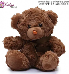 Buy Soft Toys Online India, Teddy Bear Online, Send Gifts to Mumbai Online , Teddy Bear Online Purchase, Teddy Bear Online Booking, Buy Teddy Bear Online, Teddy Bear Online in India, Teddy Bear Online Australia, Teddy Bear Online South Africa, Send Teddy bear Online with home Delivery, Same Day Online Teddy bear Delivery in Jalandhar, Online Teddy bear delivery in Jalandhar,  Midnight Teddy Bear delivery in Jalandhar,  Online shopping for Teddy Bear to Jalandhar, Kalpa Florist