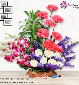 Deliver Flowers in Kapurthala, Order Online Flowers , Online Flowers India , Gifts Flowers Online, Online Flowers Delivery in India, Fresh Flowers Online Mumbai,  Online Flower Delivery in Mumbai, Online Flower Delivery at Mumbai, Buy Flowers Online Mumbai, Flowers Bouquet Online Mumbai, Cheap Flowers Online Mumbai, Send Flowers Online with home Delivery, Online Flowers Delivery Mumbai, Online Flowers Delivery Mumbai, Best Online Flower Delivery Mumbai,  Online Flower Delivery Navi Mumbai, Kalpa Florist