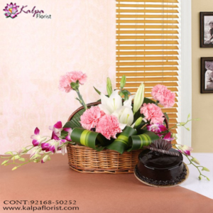 Flowers, Cake & Gifts - Delhi, Combo Gifts Delivery, Combo Online, Send Combo Gifts India, Buy Combo Gifts Online, Buy/Send Online All Combo Gifts, Send Combos gifts Online with home Delivery, Gifts Combos Online, Send Combos Birthday Gifts Online Delivery, Birthday Gifts,  Online Gift Delivery, Buy Combo Gifts for Birthday Online, Gift Combos For Her, Gift Combo for Him, Kalpa Floris