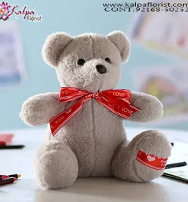 Gift Delivery to Hyderabad,  Send Gifts to Mumbai Online , Teddy Bear Online Purchase, Teddy Bear Online Booking, Buy Teddy Bear Online, Teddy Bear Online in India, Teddy Bear Online Australia, Teddy Bear Online South Africa, Send Teddy bear Online with home Delivery, Same Day Online Teddy bear Delivery in Jalandhar, Online Teddy bear delivery in Jalandhar,  Midnight Teddy Bear delivery in Jalandhar,  Online shopping for Teddy Bear to Jalandhar, Kalpa Florist