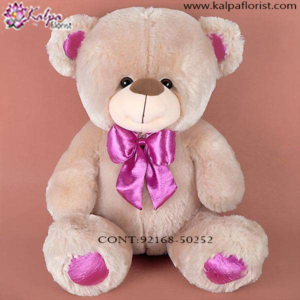 Send Teddy Bear Online Delhi,  Send Gifts to Mumbai Online , Teddy Bear Online Purchase, Teddy Bear Online Booking, Buy Teddy Bear Online, Teddy Bear Online in India, Teddy Bear Online Australia, Teddy Bear Online South Africa, Send Teddy bear Online with home Delivery, Same Day Online Teddy bear Delivery in Jalandhar, Online Teddy bear delivery in Jalandhar,  Midnight Teddy Bear delivery in Jalandhar,  Online shopping for Teddy Bear to Jalandhar, Kalpa Florist