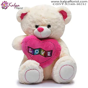 Send Teddy Bear to Delhi,  Send Gifts to Mumbai Online , Teddy Bear Online Purchase, Teddy Bear Online Booking, Buy Teddy Bear Online, Teddy Bear Online in India, Teddy Bear Online Australia, Teddy Bear Online South Africa, Send Teddy bear Online with home Delivery, Same Day Online Teddy bear Delivery in Jalandhar, Online Teddy bear delivery in Jalandhar,  Midnight Teddy Bear delivery in Jalandhar,  Online shopping for Teddy Bear to Jalandhar, Kalpa Florist