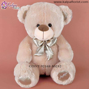 Soft Toys Gifts in Delhi,  Send Gifts to Mumbai Online , Teddy Bear Online Purchase, Teddy Bear Online Booking, Buy Teddy Bear Online, Teddy Bear Online in India, Teddy Bear Online Australia, Teddy Bear Online South Africa, Send Teddy bear Online with home Delivery, Same Day Online Teddy bear Delivery in Jalandhar, Online Teddy bear delivery in Jalandhar,  Midnight Teddy Bear delivery in Jalandhar,  Online shopping for Teddy Bear to Jalandhar, Kalpa Florist