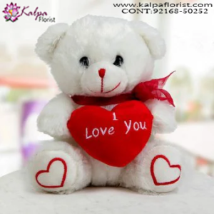 Soft Toys Online India,  Send Gifts to Mumbai Online , Teddy Bear Online Purchase, Teddy Bear Online Booking, Buy Teddy Bear Online, Teddy Bear Online in India, Teddy Bear Online Australia, Teddy Bear Online South Africa, Send Teddy bear Online with home Delivery, Same Day Online Teddy bear Delivery in Jalandhar, Online Teddy bear delivery in Jalandhar,  Midnight Teddy Bear delivery in Jalandhar,  Online shopping for Teddy Bear to Jalandhar, Kalpa Florist