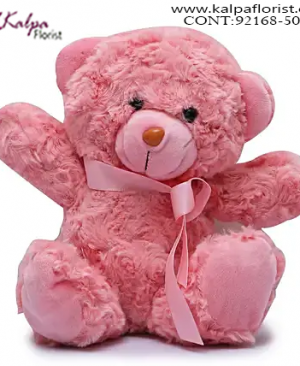 Teddy Bear Delivery in Delhi,  Send Gifts to Mumbai Online , Teddy Bear Online Purchase, Teddy Bear Online Booking, Buy Teddy Bear Online, Teddy Bear Online in India, Teddy Bear Online Australia, Teddy Bear Online South Africa, Send Teddy bear Online with home Delivery, Same Day Online Teddy bear Delivery in Jalandhar, Online Teddy bear delivery in Jalandhar,  Midnight Teddy Bear delivery in Jalandhar,  Online shopping for Teddy Bear to Jalandhar, Kalpa Florist