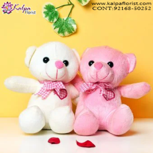 Teddy Bear Delivery in Kapurthala, Teddy Bear Online, Send Gifts to Mumbai Online , Teddy Bear Online Purchase, Teddy Bear Online Booking, Buy Teddy Bear Online, Teddy Bear Online in India, Teddy Bear Online Australia, Teddy Bear Online South Africa, Buy a Teddy Bear Online, Send Teddy bear Online with home Delivery, Same Day Online Teddy bear Delivery in Jalandhar, Online Teddy bear delivery in Jalandhar,  Midnight Teddy Bear delivery in Jalandhar,  Online shopping for Teddy Bear to Jalandhar, Kalpa Florist