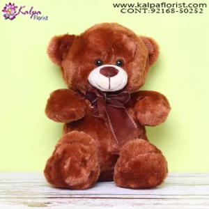 Teddy Bear Shop Near Me,  Send Gifts to Mumbai Online , Teddy Bear Online Purchase, Teddy Bear Online Booking, Buy Teddy Bear Online, Teddy Bear Online in India, Teddy Bear Online Australia, Teddy Bear Online South Africa, Send Teddy bear Online with home Delivery, Same Day Online Teddy bear Delivery in Jalandhar, Online Teddy bear delivery in Jalandhar,  Midnight Teddy Bear delivery in Jalandhar,  Online shopping for Teddy Bear to Jalandhar, Kalpa Florist