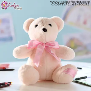 Best Teddy Bear Shop Near Me, 5 Feet Teddy Bear Online Shopping, 12 Foot Teddy Bear, 20 Foot Teddy Bear, Big Teddy Bear Price,  Online soft Toys Shopping India, Online Buy Soft Toys India, Best Soft Toys Online India, Soft Toys for Babies, Soft Toys Dog, Soft Toys Shop Near Me, Cheap Soft Toys Online, Soft Toys Online India, Send Soft Toys Online India, Buy & Send Soft Toys Online, Send Online Gifts to Chandigarh, Birthday Surprise in Chandigarh, Teddy Bear, Send Teddy Bear to Chandigarh, Soft Toys India Online Shopping, Soft Toys Chandigarh India, Buy Soft Toys Online India, Cheap Soft Toys Online India, Kalpa Florist.