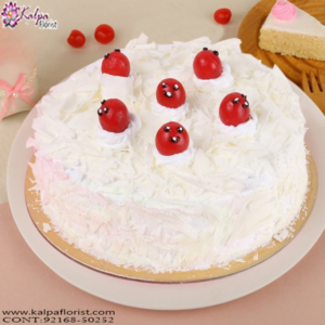 Buy Birthday Cakes Online, Order Birthday Cake Online, Order Cake Online Hyderabad, Online Cake Delivery, Order Cake Online, Send Cakes to Punjab, Online Cake Delivery in Punjab,  Online Cake Order,  Cake Online, Online Cake Delivery in India, Online Cake Delivery Near Me, Online Birthday Cake Delivery in Bangalore,  Send Cakes Online with home Delivery, Online Cake Delivery India,  Online shopping for  Cakes to Jalandhar, Order Birthday Cakes, Order Delicious Cakes Home Delivery Online, Buy and Send Cakes to India, Kalpa Florist.