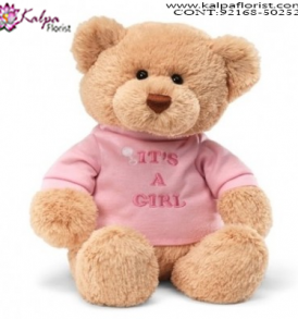 Buy Soft Toys Online, 5 Feet Teddy Bear Online Shopping, 12 Foot Teddy Bear, 20 Foot Teddy Bear, Big Teddy Bear Price,  Online soft Toys Shopping India, Online Buy Soft Toys India, Best Soft Toys Online India, Soft Toys for Babies, Soft Toys Dog, Soft Toys Shop Near Me, Cheap Soft Toys Online, Soft Toys Online India, Send Soft Toys Online India, Buy & Send Soft Toys Online, Send Online Gifts to Chandigarh, Birthday Surprise in Chandigarh, Teddy Bear, Send Teddy Bear to Chandigarh, Soft Toys India Online Shopping, Soft Toys Chandigarh India, Buy Soft Toys Online India, Cheap Soft Toys Online India, Kalpa Florist.