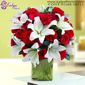 Flower Delivery in Chandigarh, Online Flower Delivery in Bangalore, Cheap Online Flower Delivery in Bangalore, Send Flowers Online Cheap, Send Flowers Online Same Day, Online Bouquet Delivery Chandigarh, Send Flowers Online India, Send Flowers Online Near Me, Send Flowers Online Uk, Order Flowers Online in Chandigarh, Send Flowers Online Australia, Send Flowers to Chandigarh Online, Online Flower Delivery Chandigarh, Online Bouquet Delivery in Chandigarh, Online Delivery of Flowers in Chandigarh, Send Flowers Online Abroad, Kalpa Florist.