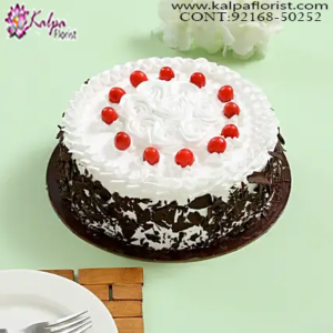 Online Cake Delivery Canada, Cakes In Chandigarh Online, Best Cakes In Chandigarh, Designer Cakes In Chandigarh, Cakes Delivery In Chandigarh, Theme Cakes In Chandigarh,  Birthday Cakes In Chandigarh,  Cake Online, Wedding Anniversary Cakes In Chandigarh, Online Cake Delivery Near Me, Barbie Cakes In Chandigarh,  Send Cakes Online with home Delivery, Online Cake Delivery India,  Online shopping for  Cakes, Order Birthday Cakes, Order Cakes Online In Chandigarh, Birthday Cakes Online In Chandigarh, Best Birthday Cakes in Chandigarh, Online Cakes Delivery In Chandigarh, Kalpa Florist.