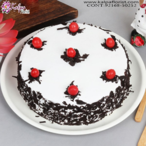 Online Cakes Delivery in Delhi, Order Birthday Cake Online, Order Cake Online Hyderabad, Online Cake Delivery, Order Cake Online, Send Cakes to Punjab, Online Cake Delivery in Punjab,  Online Cake Order,  Cake Online, Online Cake Delivery in India, Online Cake Delivery Near Me, Online Birthday Cake Delivery in Bangalore,  Send Cakes Online with home Delivery, Online Cake Delivery India,  Online shopping for  Cakes to Jalandhar, Order Birthday Cakes, Order Delicious Cakes Home Delivery Online, Buy and Send Cakes to India, Kalpa Florist.