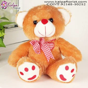 Online Teddy Shop, 5 Feet Teddy Bear Online Shopping, 12 Foot Teddy Bear, 20 Foot Teddy Bear, Big Teddy Bear Price,  Online soft Toys Shopping India, Online Buy Soft Toys India, Best Soft Toys Online India, Soft Toys for Babies, Soft Toys Dog, Soft Toys Shop Near Me, Cheap Soft Toys Online, Soft Toys Online India, Send Soft Toys Online India, Buy & Send Soft Toys Online, Send Online Gifts to Chandigarh, Birthday Surprise in Chandigarh, Teddy Bear, Send Teddy Bear to Chandigarh, Soft Toys India Online Shopping, Soft Toys Chandigarh India, Buy Soft Toys Online India, Cheap Soft Toys Online India, Kalpa Florist.