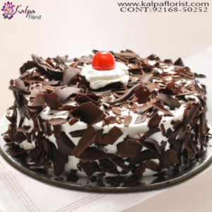 Send Birthday Cake, Cakes In Chandigarh Online, Best Cakes In Chandigarh, Designer Cakes In Chandigarh, Cakes Delivery In Chandigarh, Theme Cakes In Chandigarh,  Birthday Cakes In Chandigarh,  Cake Online, Wedding Anniversary Cakes In Chandigarh, Online Cake Delivery Near Me, Barbie Cakes In Chandigarh,  Send Cakes Online with home Delivery, Online Cake Delivery India,  Online shopping for  Cakes, Order Birthday Cakes, Order Cakes Online In Chandigarh, Birthday Cakes Online In Chandigarh, Best Birthday Cakes in Chandigarh, Online Cakes Delivery In Chandigarh, Kalpa Florist.