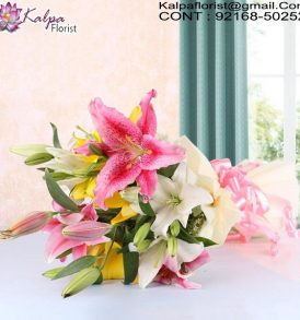 Send Online Flowers in Delhi, Online Flower Delivery in Bangalore, Cheap Online Flower Delivery in Bangalore, Send Flowers Online Cheap, Send Flowers Online Same Day, Online Bouquet Delivery Chandigarh, Send Flowers Online India, Send Flowers Online Near Me, Send Flowers Online Uk, Order Flowers Online in Chandigarh, Send Flowers Online Australia, Send Flowers to Chandigarh Online, Online Flower Delivery Chandigarh, Online Bouquet Delivery in Chandigarh, Online Delivery of Flowers in Chandigarh, Send Flowers Online Abroad, Kalpa Florist.
