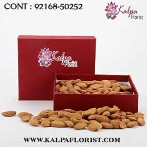 diwali dry fruits gift, diwali dry fruits gift box, diwali dry fruits gift pack online, online diwali gifts dry fruits, diwali dry fruits gift, diwali dry fruits gift pack, diwali dry fruits gift pack price, diwali dry fruits gifts, diwali dry fruit gift for diwali, dry fruits gift pack for diwali, dry fruits gift box for diwali, dry fruit gift packing for gifting,  kalpa florist