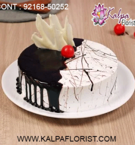 online cake delivery in khanna, online cake delivery in ferozepur punjab, online cake delivery in ferozepur, online cake delivery jalandhar, online cake delivery in amritsar, online cake delivery in mohali, online cake delivery in chandigarh, online cake delivery in gurgaon, online cake delivery in pathankot, online cake delivery in ludhiana, online cake delivery in bathinda, order a cake online delivery, kalpa florist send cake in india, send cake to india, how to send a cake online for birthday, how to send cake online in india, does monginis do home delivery, how to deliver cake in delhi, send birthday cake in india, how to deliver cake in canada from india, how to send birthday cake online in india, cake delivery in bangalore india, send cake anywhere in india, cake delivery in patna india, send cake to india from canada, cake delivery in indore india, send cake to mumbai india, cake delivery in nagpur india, cake delivery in india hyderabad, cake delivery in ghaziabad india, buy send cake to india from australia, online cake delivery in india same day, how to send flowers and cake in india, cake delivery in surat india, cake delivery india reviews, how can i send cake to india, send cake in india online, how to send cake to india, want to send cake for birthday in india, send cake to india from uk, how to order cake from india to usa, how to order cake online in india, send cake to india hyderabad, send birthday cake and flowers online in india, cake delivery in lucknow india, send cake to india from dubai, can i order monginis cake online, send cake to surat india