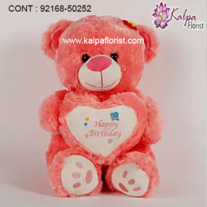 send teddy bear online, send teddy bear online india, send teddy bear online usa, send flowers and teddy bear online, send teddy bear and chocolate, send teddy bear to canada, send teddy bear to india, send teddy bear online india, send a teddy bear, send a teddy bear same day, send a teddy bear gift uk, send teddy bear brisbane, send a big teddy bear, kalpa florist