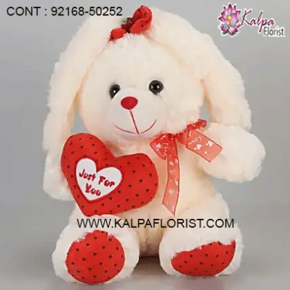 Buy big teddy bear online in India at Lowest Price and Cash on Delivery. Offers and discounts on big teddy bear at Kalpa Florist Shopping. Gift big teddy bear online and compare big teddy bear features and specifications!