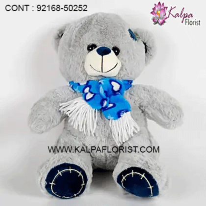 Buy Teddy bear soft toy happy birthday message card for sister online at a discounted price from Kalpa Florist Shop Toys, Baby & Kids, Toys Lowest Prices. Shop now!